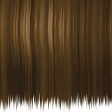 Silky brown hair. Texture isolated over white.  This one tiles seamlessly Stock Images