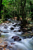 Silky creek - Long exposure Stock Images