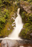 Silky forest waterfall cascading down rocky slope Stock Images