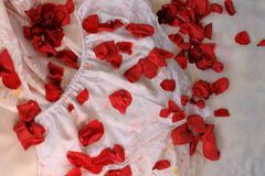 Silky lingerie and rose petals Stock Photography