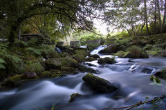 Silky river royalty free stock photo