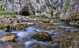 Silky rzeka Zdjęcia Royalty Free