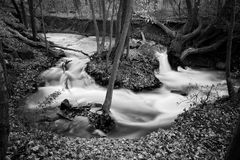 Silky Smooth. This beautiful stream is part of the Holley Falls Park in NY stock photos