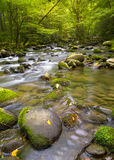 Silky stream near Greenbrier Road in the Smoky Mountains Stock Images