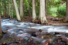 Silky Water Creek Royalty Free Stock Image