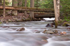 Silky water flow Stock Images