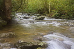 Silky water in the Smoky Mountains Stock Photography