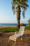 Sillón cerca de la palmera en la playa Imagen de archivo libre de regalías