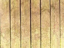 Wet hard wood board with weathering resists surface. Wooden beach pier floor. The sill wet hard wood board with weathering resists surface. Wooden floor of beach Stock Image