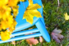 Silla azul Imagen de archivo libre de regalías