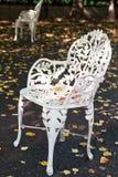 Silla blanca del hierro en otoño al aire libre del café Fotos de archivo libres de regalías