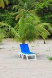Silla de cubierta debajo de la palmera Imagen de archivo