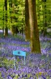 Silla de jardín en flores Imagenes de archivo