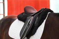 Silla de montar en un caballo Imagen de archivo libre de regalías