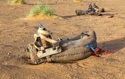 Silla de montar para un camello Fotos de archivo