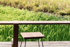 Silla de tabla de madera vacía con el fondo del paisaje de Asia del campo del arroz del verano de la primavera de la visión fotos de archivo libres de regalías