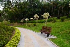 Silla en parque Foto de archivo libre de regalías