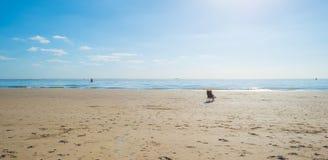 Silla en una playa Foto de archivo libre de regalías