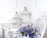 Silla y vector con la flor en frente y jaulas Imagen de archivo libre de regalías