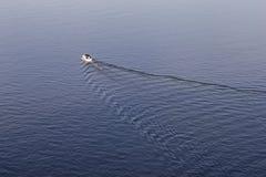 Sillage de bateau sur la surface de l'eau dans la lumi?re de coucher du soleil photo libre de droits