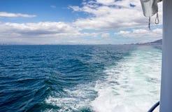 Sillage de canot automobile sur l'océan Photo stock