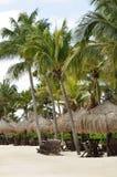 Sillas de playa bajo las palmeras en la playa tropical Fotos de archivo
