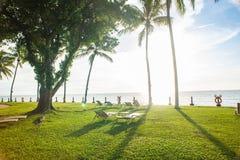 sillas de playa debajo de la palmera que ve la puesta del sol Fotos de archivo libres de regalías