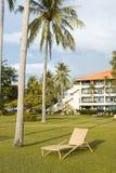 sillas de playa debajo de la palmera que ve la puesta del sol Fotos de archivo