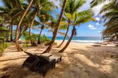 Sillas de playa debajo de las palmeras en la playa hermosa en Seychelles Fotografía de archivo libre de regalías