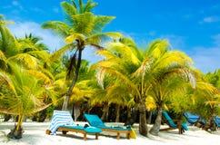 Sillas en la playa del paraíso imagenes de archivo