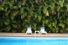 Sillas laterales de la piscina en palmas Foto de archivo