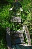 Sillas resistidas del adirondack obscurecidas por las malas hierbas altas fotos de archivo