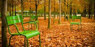 Sillas verdes en las hojas que caen del otoño imagen de archivo libre de regalías