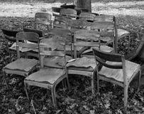 Sillas viejas debajo del árbol de arce Foto de archivo libre de regalías