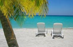 Sillas y palma del Caribe de playa Foto de archivo libre de regalías