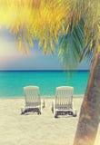 Sillas y palma del Caribe de playa Imagen de archivo libre de regalías
