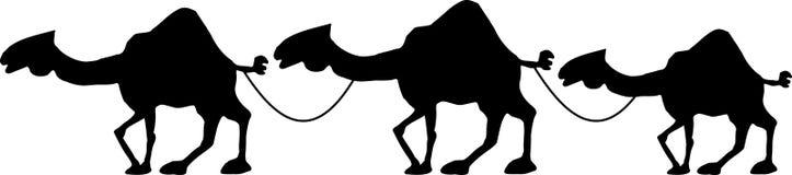 sillhouette верблюдов Стоковое Изображение