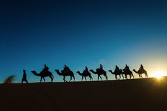 Sillhouette of camel caravan going through the desert at sunset. Stock Image