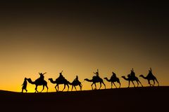 Sillhouette of camel caravan with happy peopple going through the desert at sunset with red sky in background.  stock photo