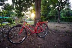 sillhouettepic /Backlight met rode fiets in het park Royalty-vrije Stock Afbeelding