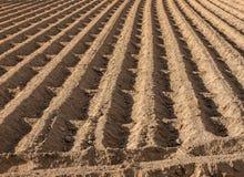 Sillons labourés de la terre de terres cultivables Images stock