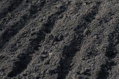 Sillons vides sur la terre noire dans un domaine de ferme en premier ressort Préparation de sol pour planter des graines Feuilles photos stock