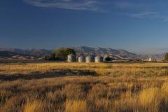 Sillos dans la campagne de l'Idaho Photographie stock libre de droits