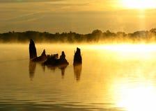 sillouette утра тумана стоковые изображения rf