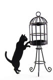 Sillouette of a cat and birdcage Royalty Free Stock Photos