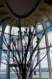 Sillouette dos pássaros na árvore Foto de Stock