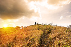 Sillouette man stand on peak mountain meadow golden Royalty Free Stock Images