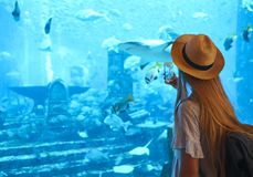 Sillouette of the woman taking picture in large aquarium. Sillouette of the woman in hat taking picture in large aquarium in Dubai royalty free stock photo