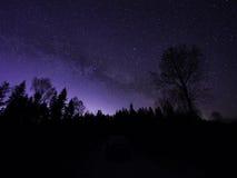 Sillouettes degli alberi alla notte nell'inverno Cielo notturno, stelle Immagini Stock
