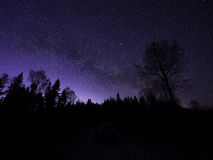 Sillouettes of trees at night in winter. Night sky, stars. Stock Images
